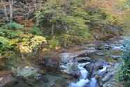 磐梯熱海の紅葉は・・